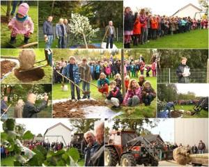 2013_10_18_Pflanzaktion Heimatverein Grundschule_Collage